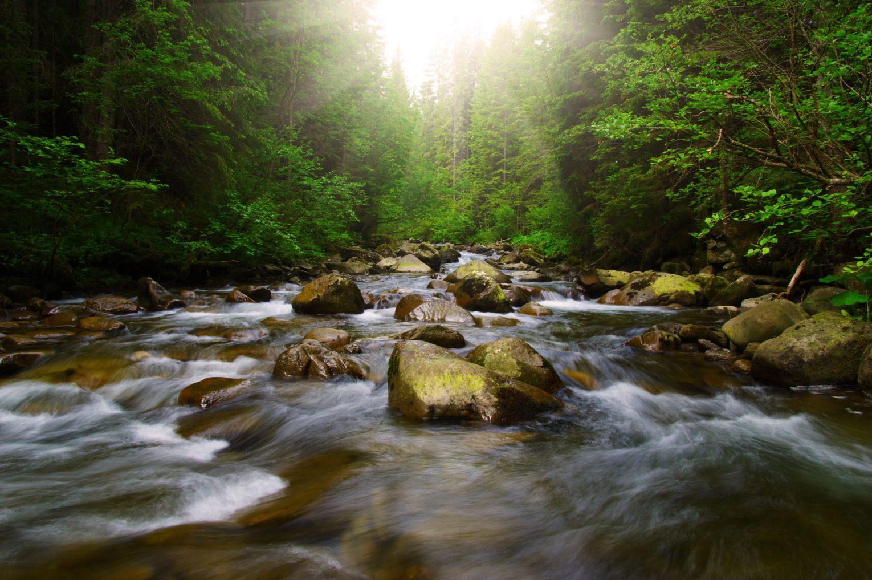 Mountain River Colorado